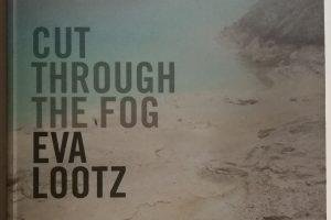 cut through the fog